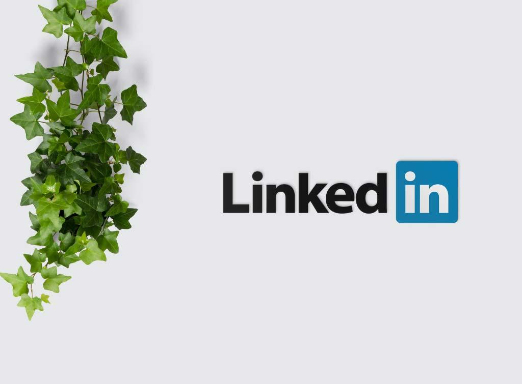 LinkedIn for inspectors
